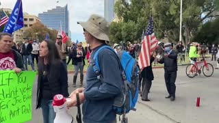 Stop the Steal Rally-1