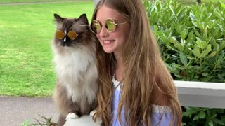 Fashionable cat happily wearing sunglasses at the park