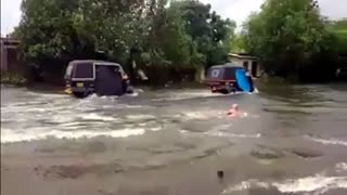 British Swimming on Busy Indian Road