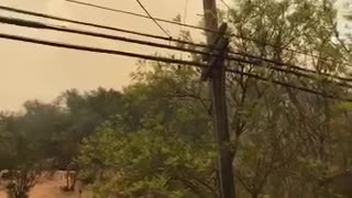 Firefighters Deploy Helicopters to Fight Brentwood Brush Fire - Video