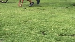 Guy maroon shirt trying to practicing standing up on surfboard park grass - Video
