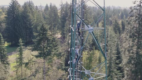 Pacificrigger's Tower Climbing crew at work