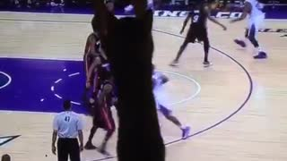 Cat tries to fight kings basketball game - Video