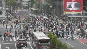 This is the World's busiest intersection - Video