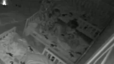 Twins execute perfect dive bombs back into bed when they hear mom
