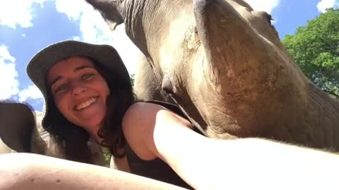 Amazing Rhinos Just Want To Cuddle