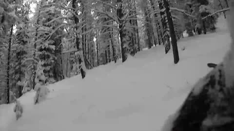 Powder stash at Grand Targhee, Wyoming