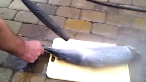 How to clean fish remove scales in seconds - pressure washer