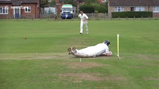 Hilarious cricket fail - Video
