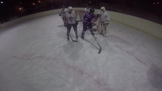 Ice Hockey Brawl - Video