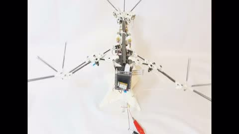 Robot drone mimics real-life bat