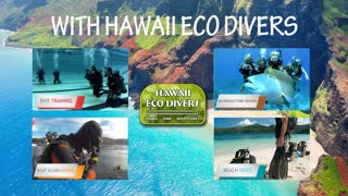 Experience Scuba Diving in Hawaii - Video
