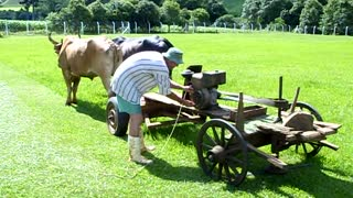 Redneck Lawn Mower - Video