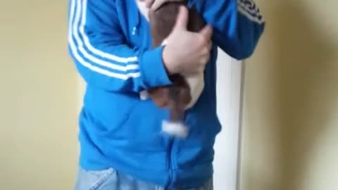 Puppy has emotional reaction upon owner's return home