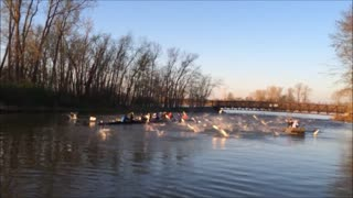 Rowing Team Attacked By Flying Asian Carp Fish - Video