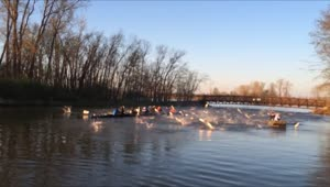 Rowing team attacked by flying fish - Video