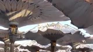 opening interesting tents - Video