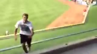 Fan running on field eludes security