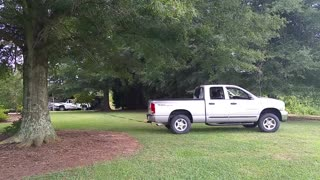 Truck vs. Tree - Video
