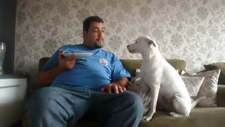 Man Argues with His Dog - Video