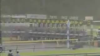 This Horse Race Ends Up With Big Surprise ! - Video