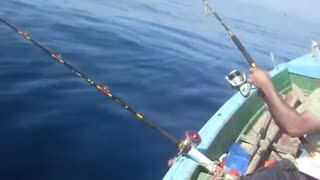 Catching Fish From The Mid Of The Sea  - Video