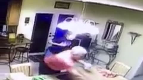 Epic fail: Security footage captures blue crab fiasco in kitchen