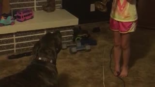 Dog barking every time owner plays trumpet - Video