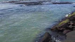 Strange Tides After the 6.9 Earthquake in Hawaii - Video
