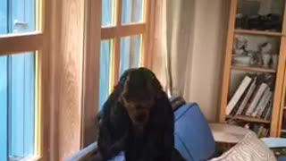 Dog howls every time human plays piano - Video