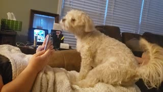 Sadie wants you off your phone!!!