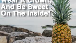 Be A Pineapple - Video