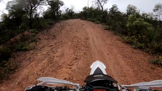 Kangaroo Jumps into Dirt Bike Rider