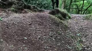 Mountain Unicyclist Attempts Difficult Trail Stunt