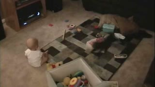 Unsuspecting Baby Knocked Over By Playful Kitten - Video