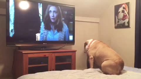 Bulldog warns actress of danger during scary movie scene
