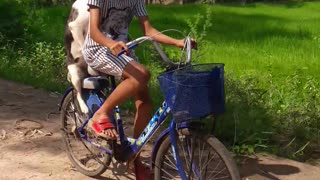 Thailand Bike Ride - Video