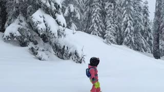 Adorable Toddler Tears Up the Slopes