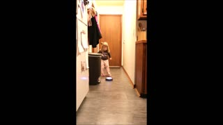 Toddler helps dad review 'Amazing Hover Ball'  - Video