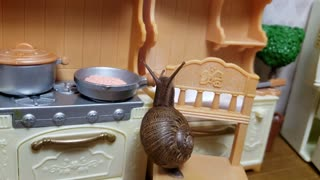 Tiny Snail Cooks Dinner, A Slow Cooker Adventures