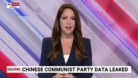 Major data leak reveals Chinese infiltration in USA government, business, media