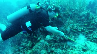Two Young Brothers Hunt a Destructive ocean Predator - Video