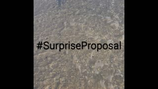 Surprise Sunset Beach Proposal, He wants to marry her! - Video