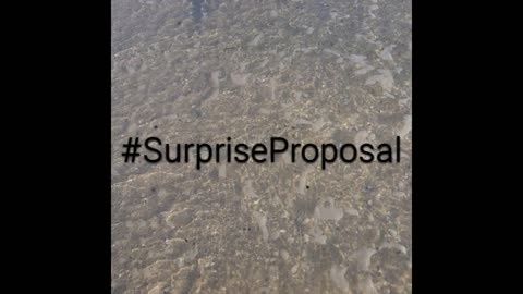 Surprise Sunset Beach Proposal, He wants to marry her!