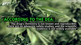 DEA Keeps Marijuana Illegal - Video