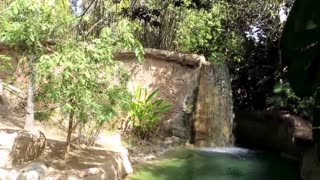 Waterfall At The Zoo - Video