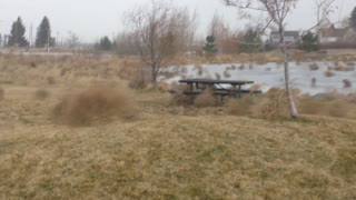 Insane. The temp dropped 19 F in as many minutes and there had to be thousands of Tumbleweeds. - Video