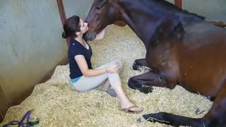 Girl and Horse – Great Bond - Video