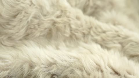 Luxury Real Fur Blankets, Throws and Pillows made with Authentic Toscana Sheep Fur