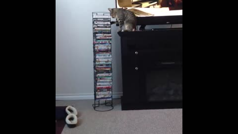I wondered why I was finding my movies on the floor